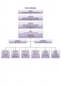 Stuktur-Organisasi-Kim-warna